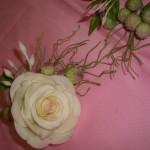 Sugar Flowers 4
